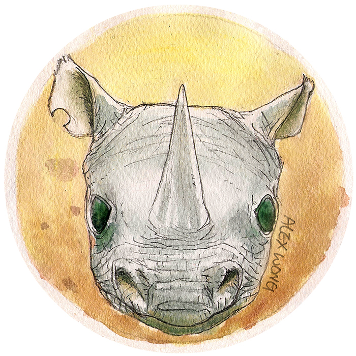 Veggie Power - Rhino