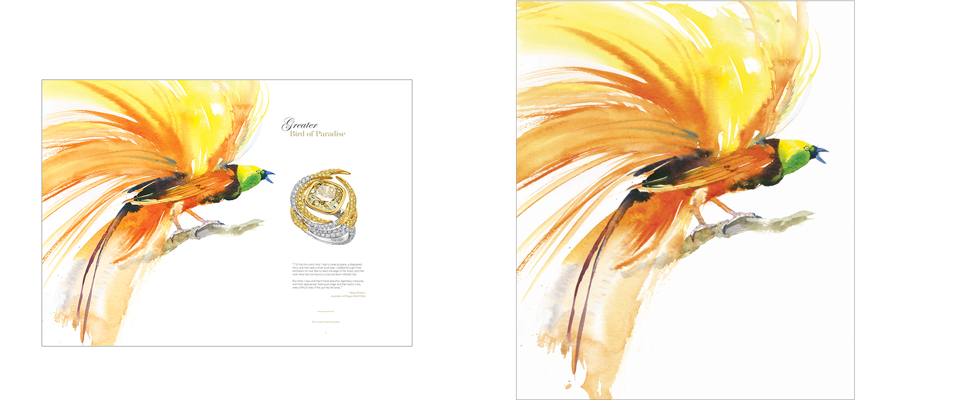 Van Eyck Fine Jewelry, the Birds of Paradise series