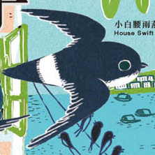 Swallow and Swift Leaflet 2015-2016 by The Hong Kong Bird Watching Society
