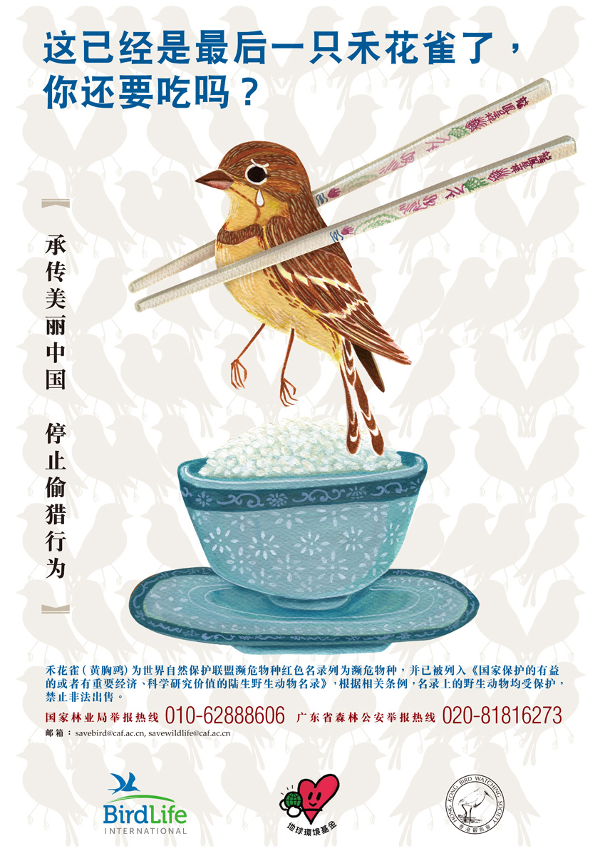 Sparrows Poster for Mainland by The Hong Kong Bird Watching Society 2016