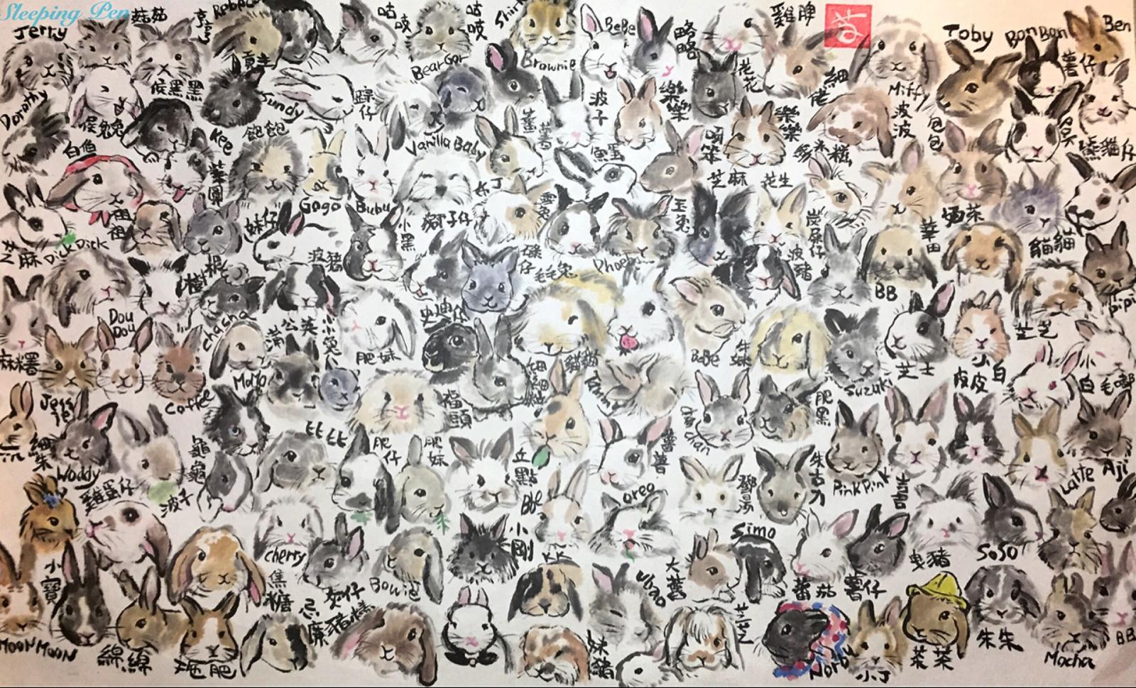 Hundreds of Rabbits