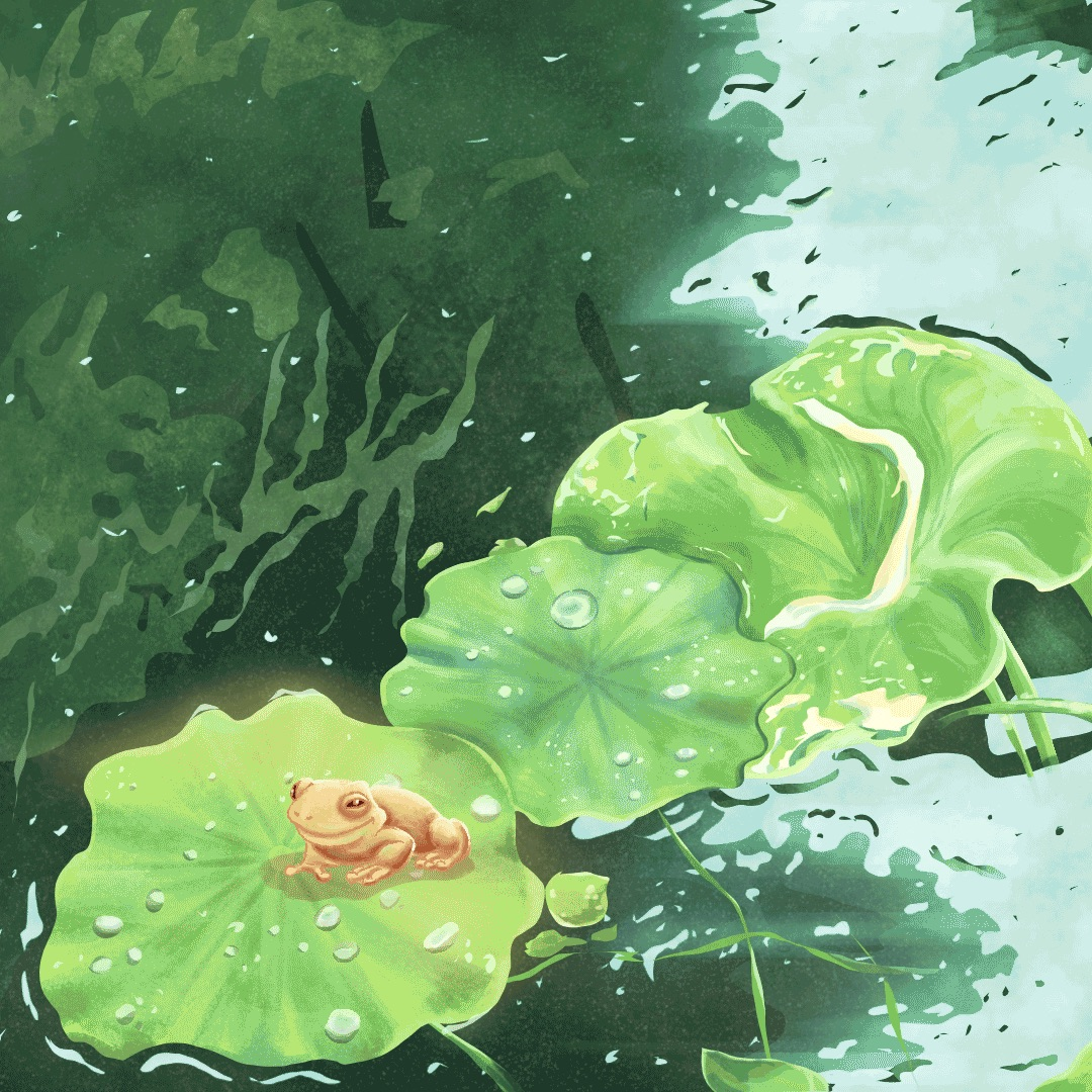 Frog and the pond