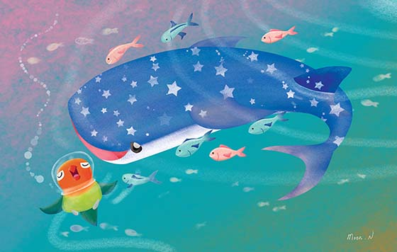 Noddy and Whale Shark